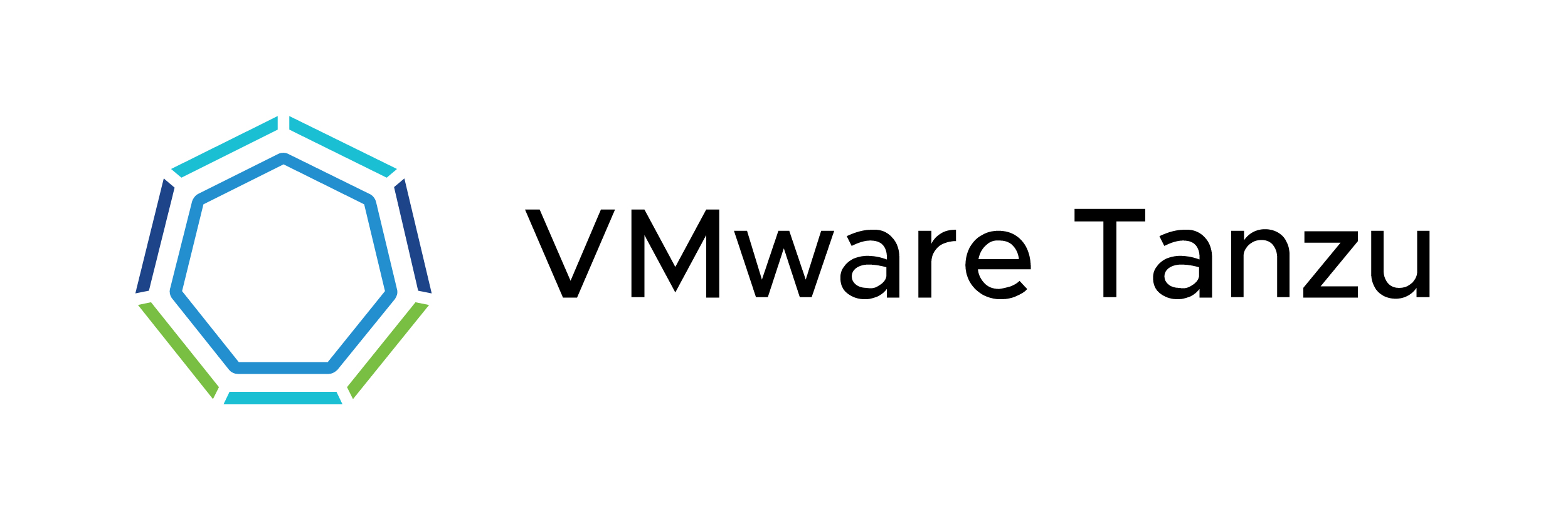 partner logos in white rectangles-VMware Tanzu